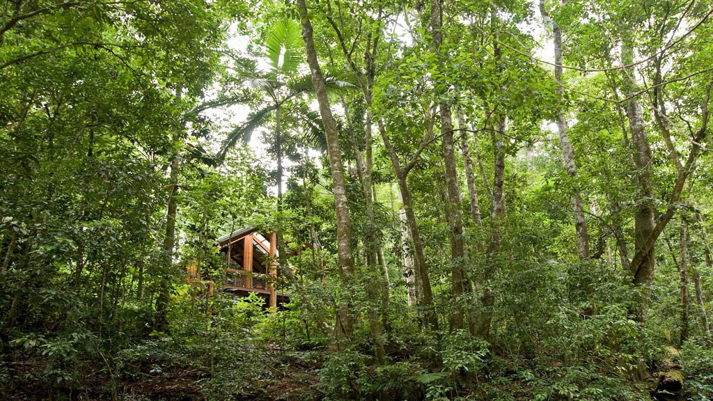 7 aussie treehouses we love