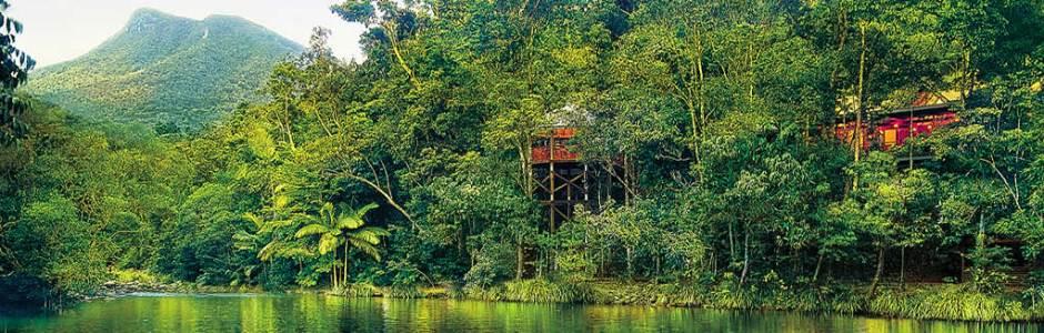 7 aussie treehouses we love