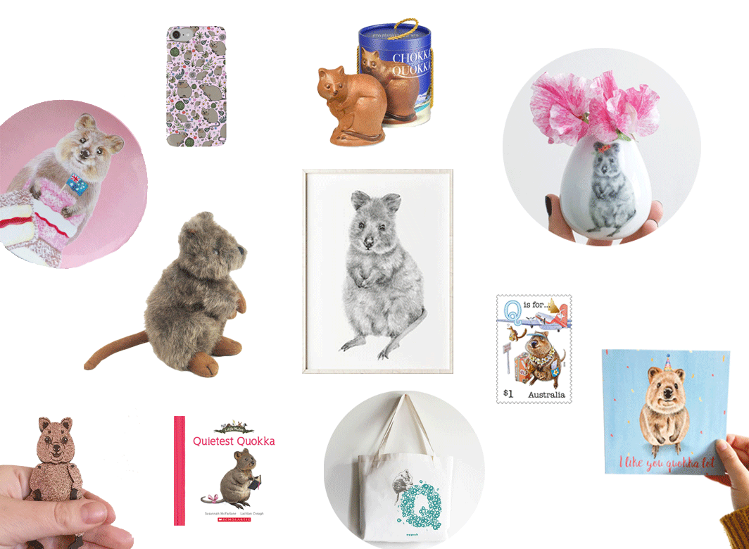 11 Thing A Quokka Fan Will Love on child mags blog